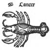 stjernetegn passer sammen aldersgrense piercing i navlen